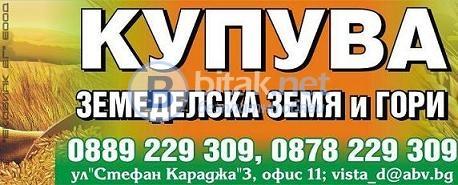 Обл. велико търново-купува земи и идеални части, и гори! най-високи цени!!!