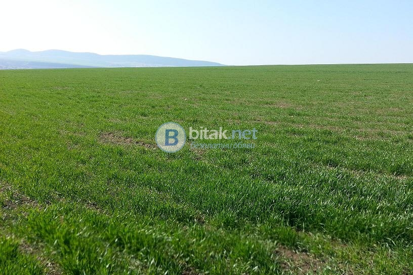 Земи с утвърдена площадка в община поморие,  с. александрово € 9/кв.м. до 350дка