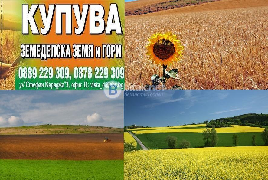 Купува земеделски земи и идеални части в общ. белене – деков, татари, белене, петокладенци