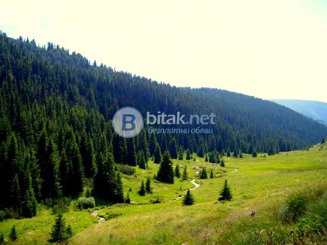 Гора в с. Лилково