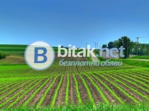 Купувам земеделски земи в област плевен, общините червен бряг, кнежа, левски, пордим, искъ