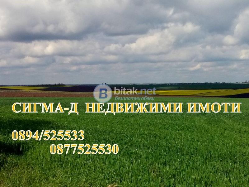Купува земеделска земя в обл.Разград