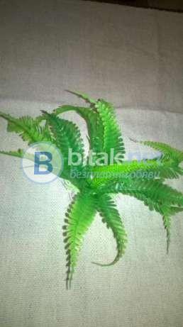 Изкуствени водорасли за аквариум - 5 вида