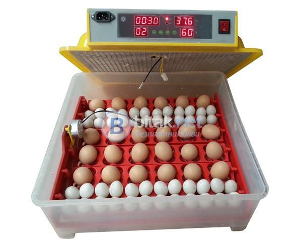 Автоматични Дигитални яйца за птичи яйца