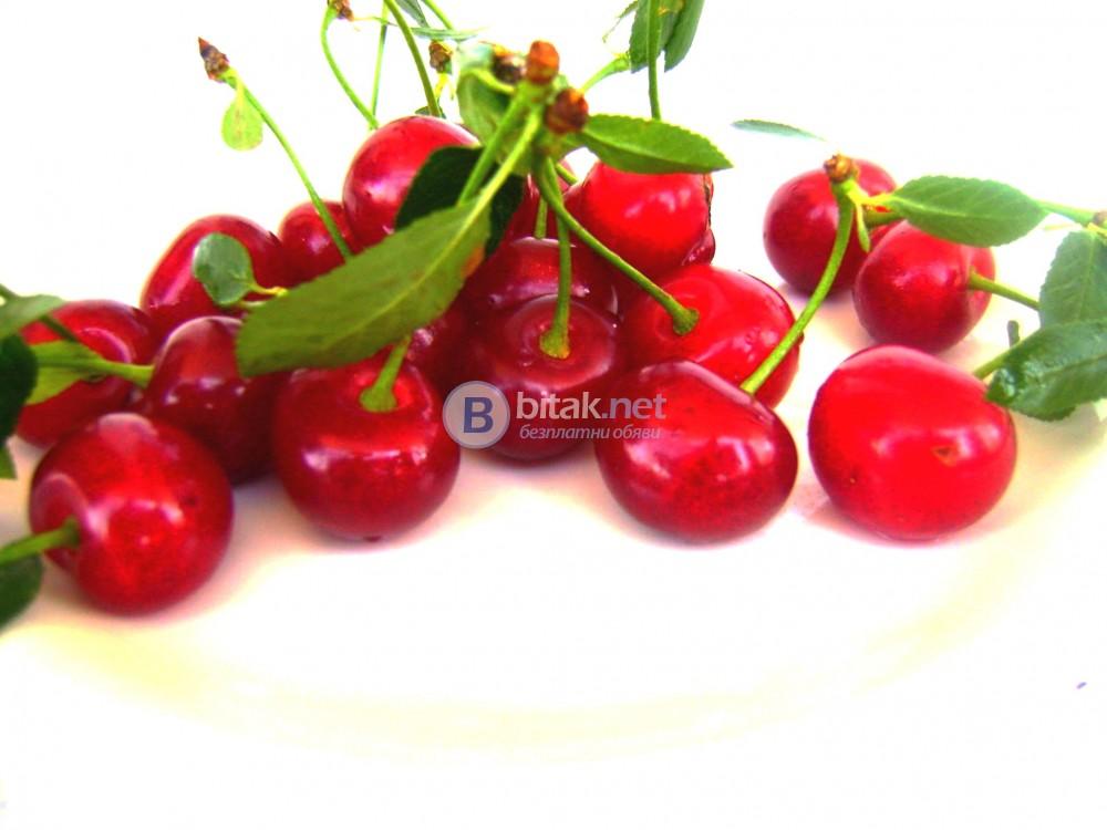 Домашен сироп от вишни за разреждане 1:6