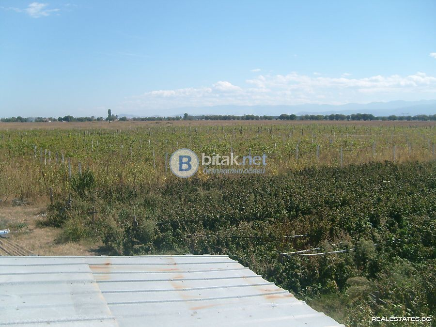 Продавам земеделска земя в землището на гр.Септември
