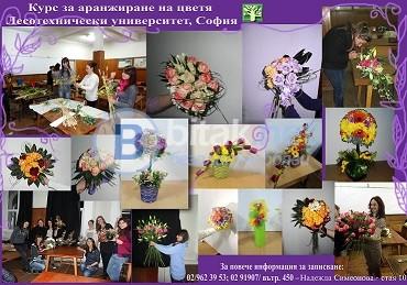 Професионален Курс за аранжиране на цветя към ЛТУ - септември 2017