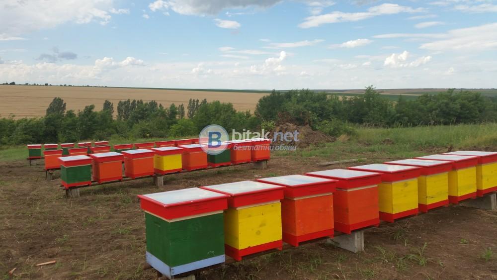 Пчелен мед собствено производство