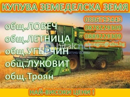 Купуваме земеделски земи, гори и дървесина в област Ловеч!