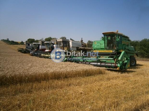 Купувам земеделска земя всички землища област  Видин