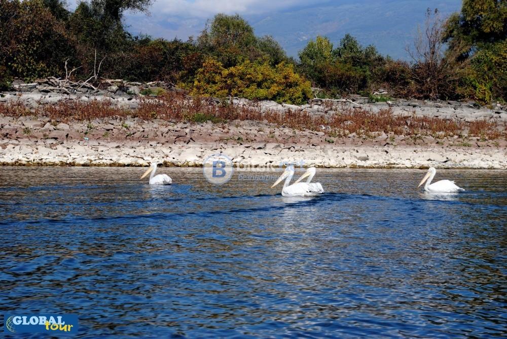 Еднодневна екскурзия до езерото Керкини, Серес и Серския манастир