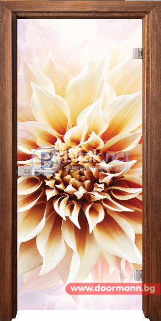 Стъклена врата модел Print 13-5