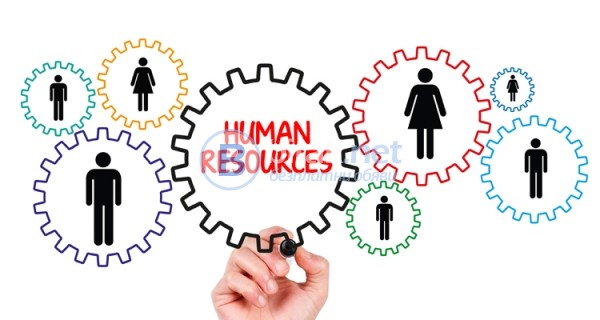 Управление на човешки ресурси