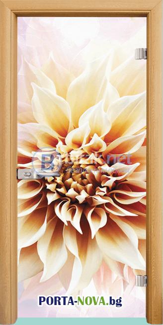 Стъклена интериорна врата, Print G 13-5