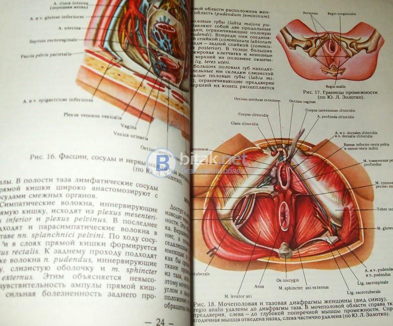 Атлас урогинекологических операций ,  Д.П.Чухриенко, А.В.Люлько,Н.Т.Романенко
