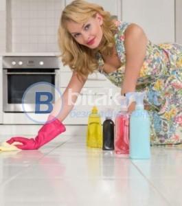Почистване. Услуги за домакинтствата
