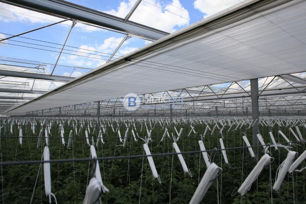 Селскостопански Работници