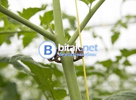 Скоби за домати и краставички