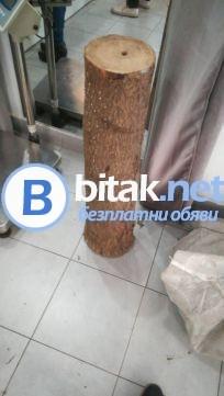 Подаряваме мостри от дървесина от Пауловния томентоза